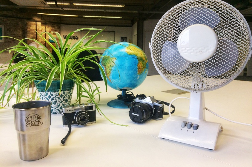 An image of a plant on a desk.