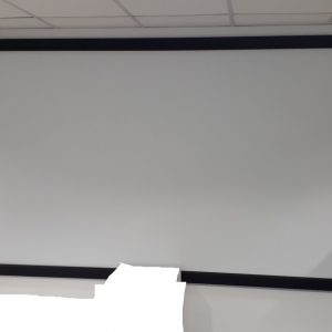Projector screen - 280 wide x 167 tall approx
